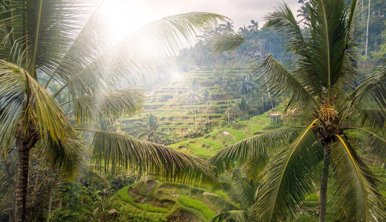 Malajzia, Singapur a ostrov bohov Bali