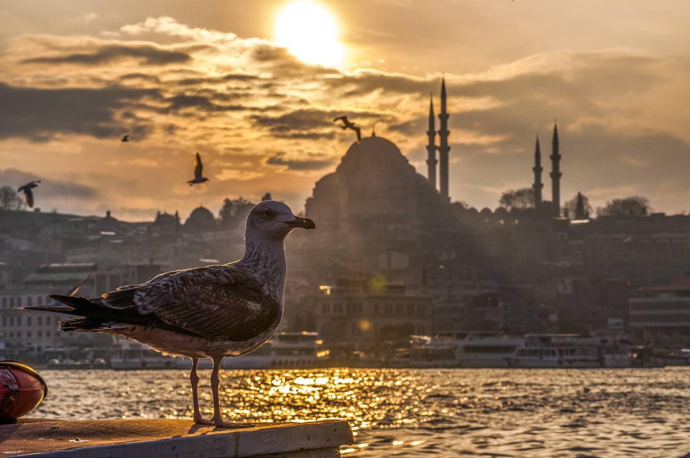 Ako bolo v Turecku