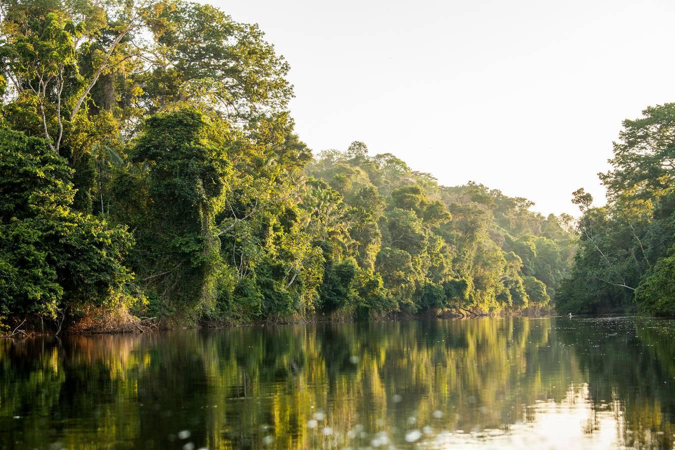 Prečo cestovať do Surinamu?