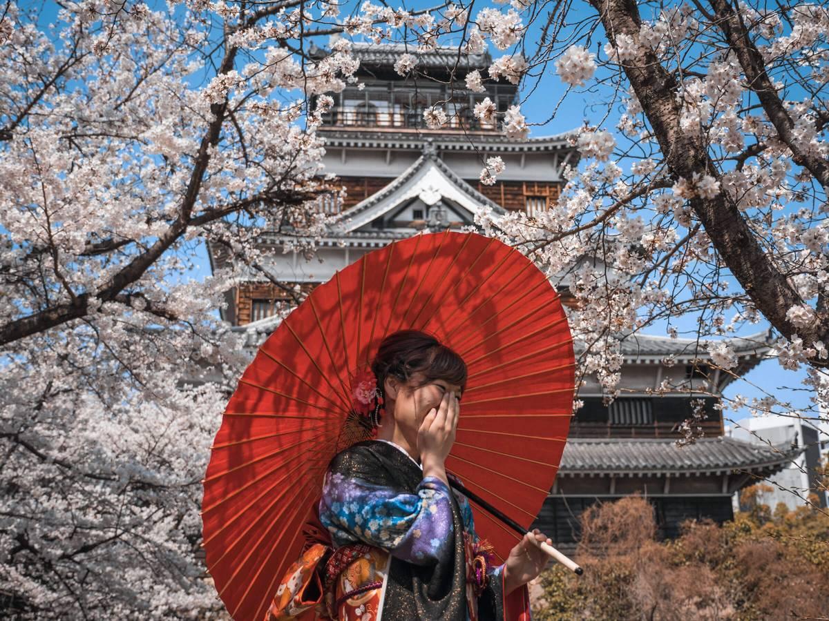 Hirošima – kde po bombe rástli oleandre