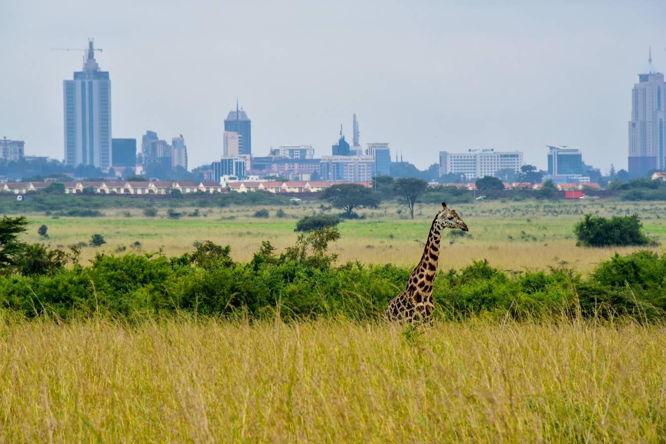 Nairobi, zelené mesto pod slnkom