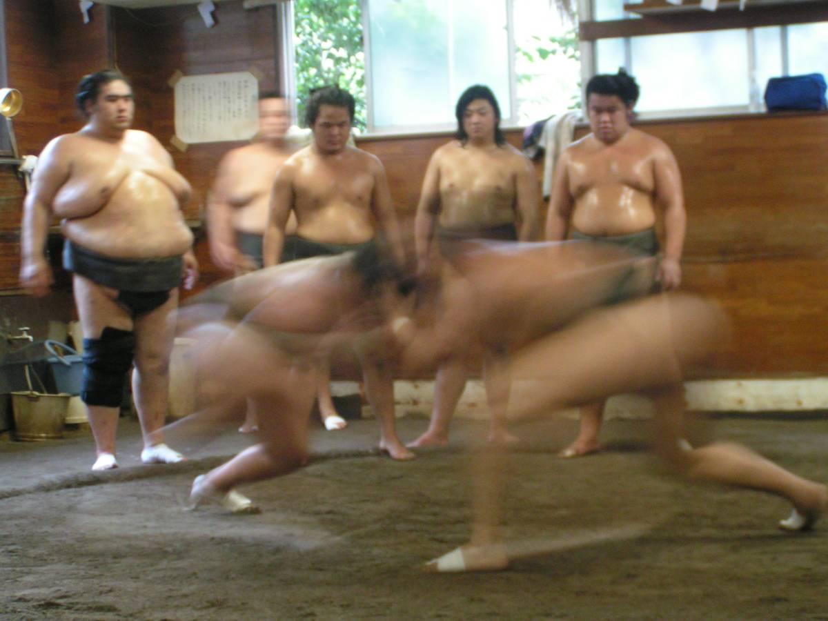 Škandál v sumo