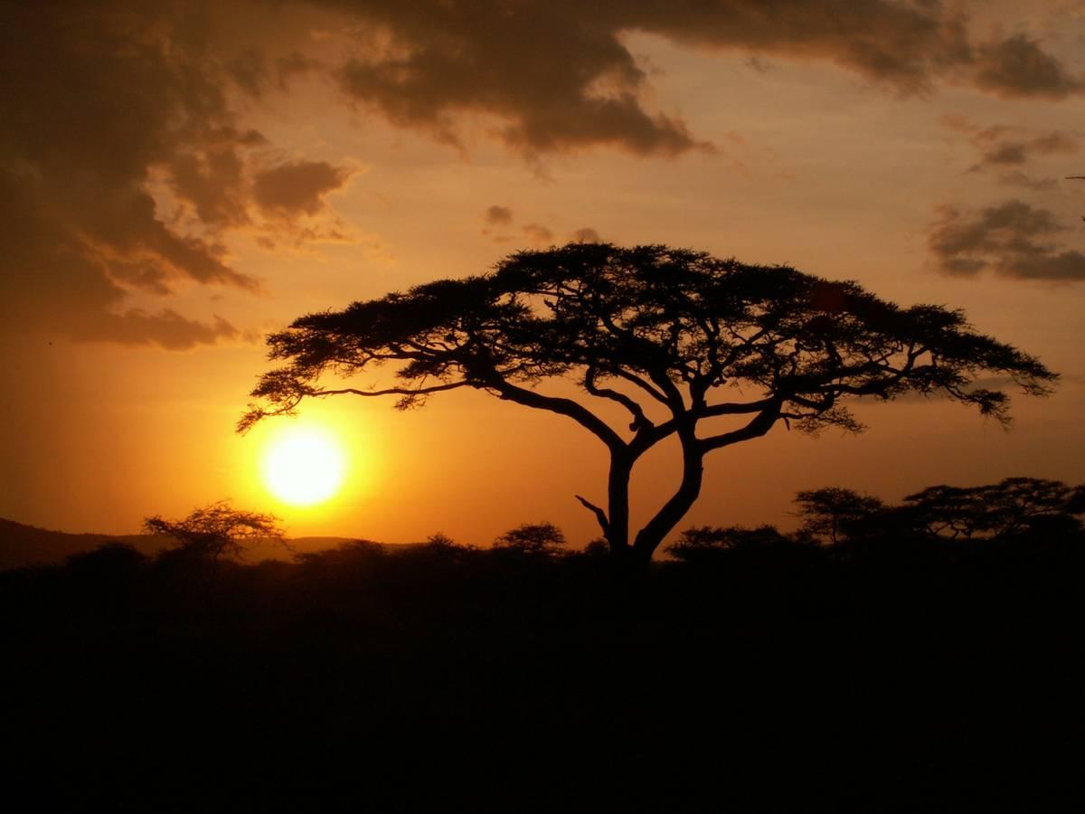 TOP 10 najpopulárnejších ciest do Afriky