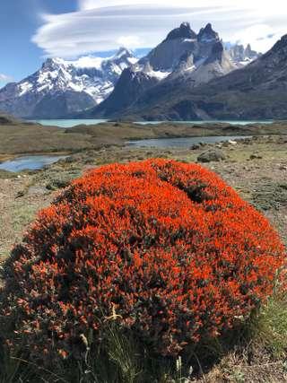 Atacama-Salta