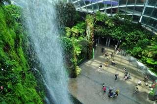 Gardens by the Bay v Singapure