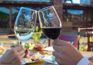 Najlepšie mexické víno