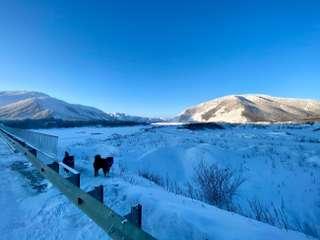 Najhrozivejšie gulagy na Sibíri