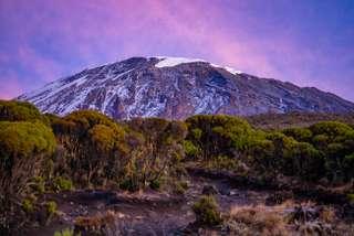 Sme na Kilimanjare - 5895
