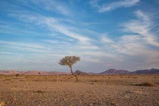 Poďakovanie z Namíbie