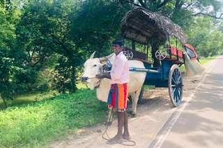 Srí Lanka očami klientov
