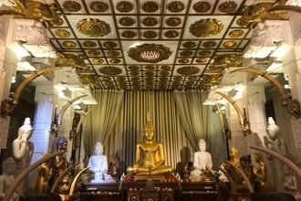 Poďme sa pozrieť Budhovi na zúbok
