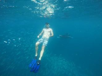 Dotyk s mantami a korálovými žralokmi