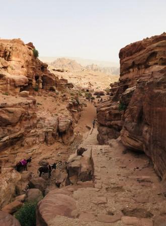 Poznáte Beduínov?