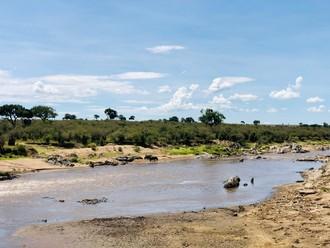 Bodkovaná Maasai Mara