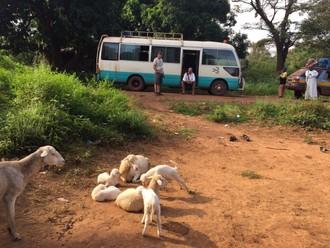 Ebola tour 33