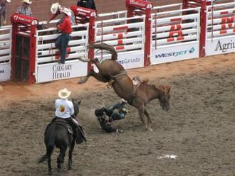 Najlepšie rodeo na svete