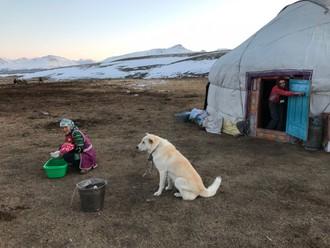Život v kazašskej jurte