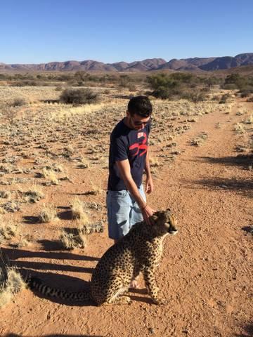 05631d217d71c Zastavíme na farme, ktorá chová osirelé gepardy. Je to jedinečná možnosť sa  stretnúť s