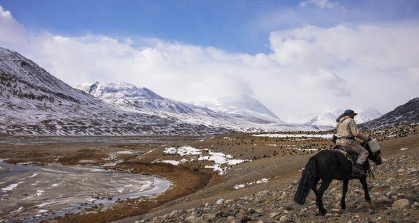 Altaj - komplexné porovnanie, rady a skúsenosti