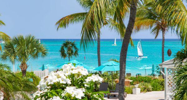 Hľadanie najkrajšej pláže sveta