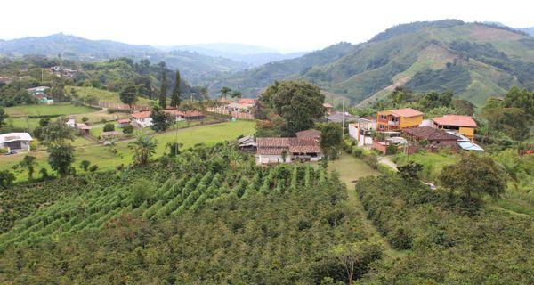 Príbeh kolumbijskej kávy