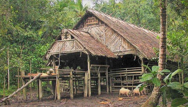 Uma - tradičné siberutské domy