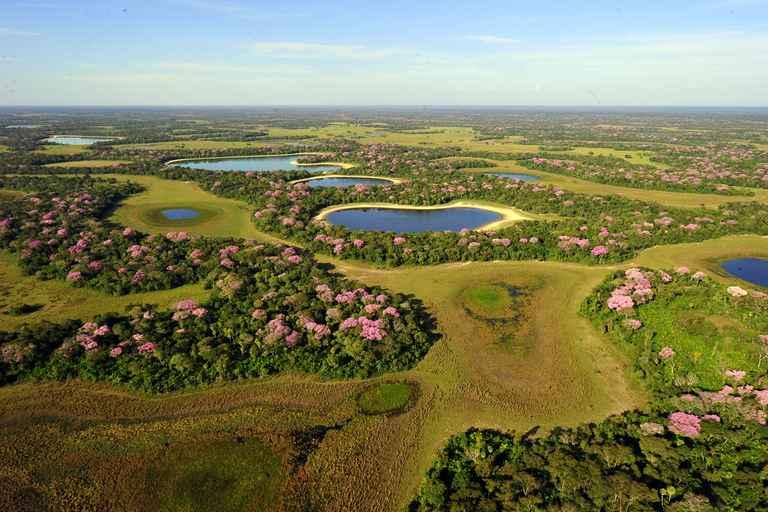 Dovolenka Argentína, Brazília a expedícia Pantanal