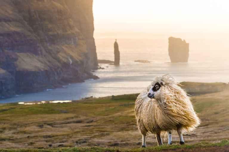 Dovolenka Faerské ostrovy a Island