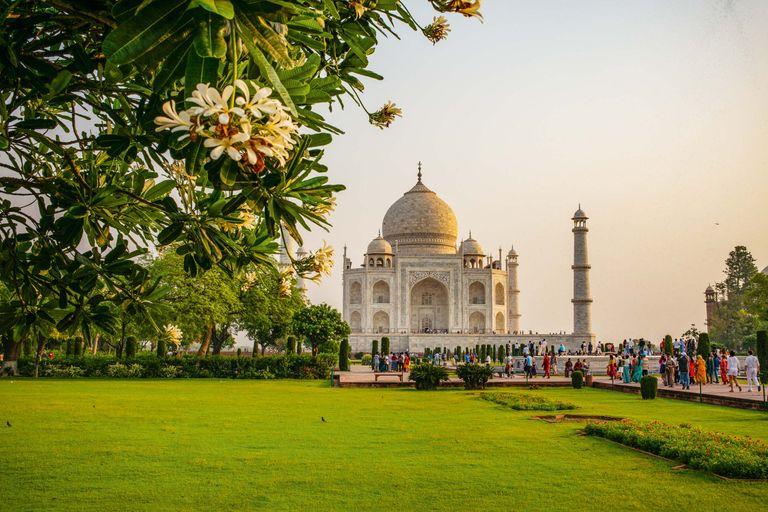 Dovolenka India - zlatý trojuholník