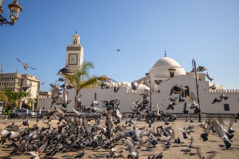 Dovolenka Alžírsko - najväčšou krajinou Afriky