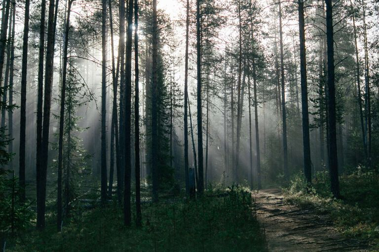 Dovolenka Škandinávia, Laponsko