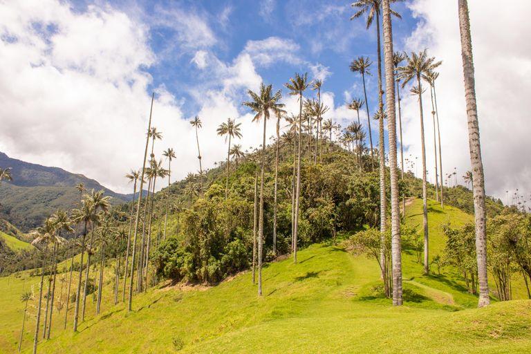 Dovolenka Ekvádor - Galapágy a Kolumbia 2021