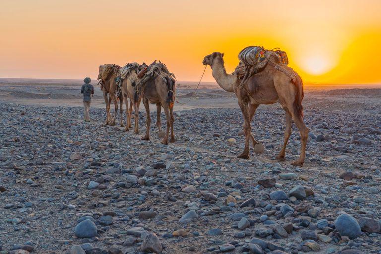 Dovolenka Etiópia na maximim + Džibutsko