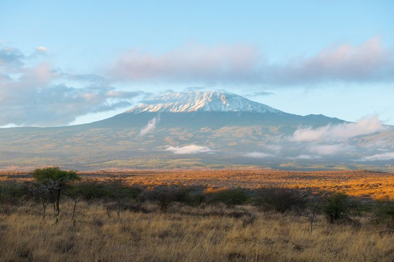 Dovolenka Kilimandžáro - Lemosho Route