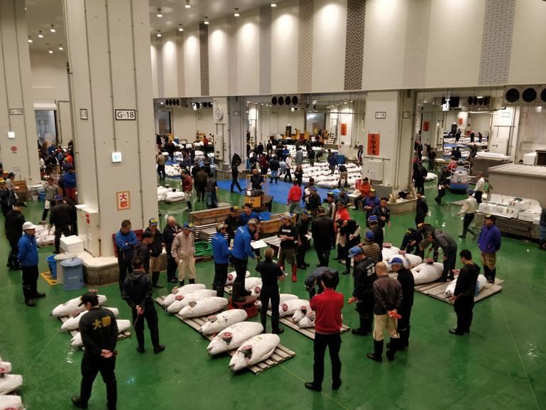 Japonský trh Toyosu: Keď nestačia superlatívy