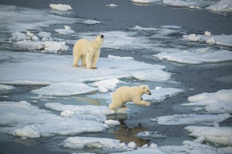 Špicbergy - Rusi a ľadové medvede